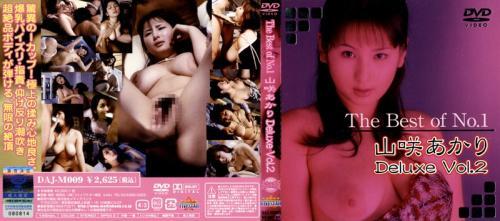 The Best of No.1 山咲あかり Deluxe Vol.2
